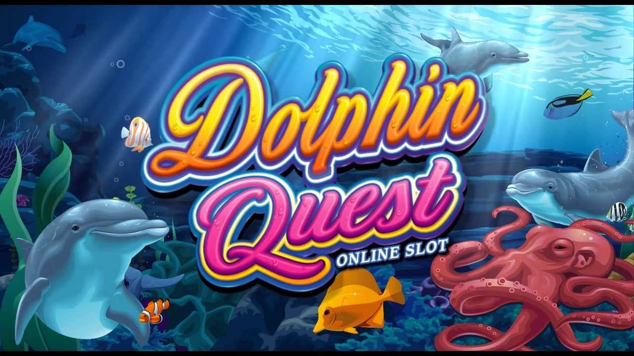 dolphins quest 2b